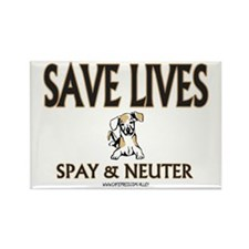 Spay & Neuter (dog) Rectangle Magnet