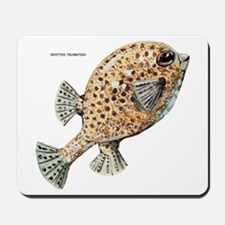 Spotted Trunkfish Fish Mousepad