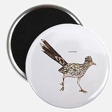 """Roadrunner Desert Bird 2.25"""" Magnet (10 pack)"""