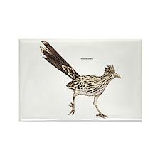 Roadrunner Desert Bird Rectangle Magnet