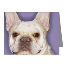 French Bulldog Note Cards (Pk of 20)