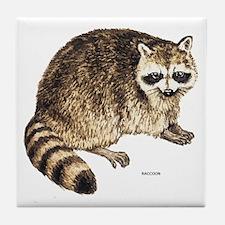 Raccoon Coon Animal Tile Coaster