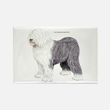 Old English Sheepdog Dog Rectangle Magnet (10 pack