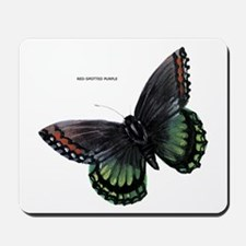 Red-Spotted Purple Butterfly Mousepad