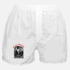 Whitefield Boxer Shorts