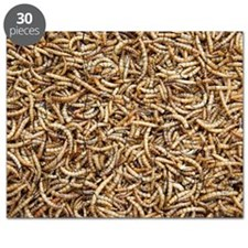 Mealworms Puzzle