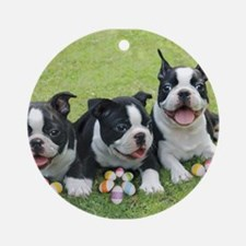 Easter boston terriers Ornament (Round)