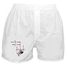 DANE CROSSWORD Boxer Shorts