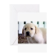 Cute Family quotations Greeting Card