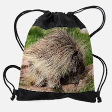 Unique Porcupine Drawstring Bag