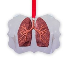 Human Lungs Picture Ornament