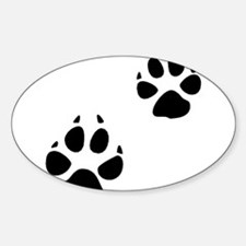 Coyote Tracks Oval Decal