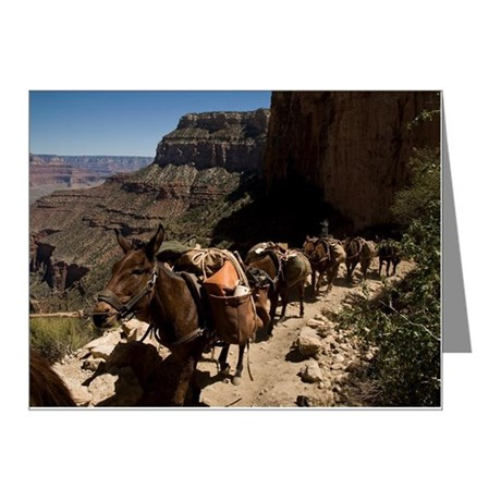 A group of pack donkeys walk Note Cards (Pk of 10)