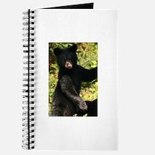 Unique Save black bears Journal