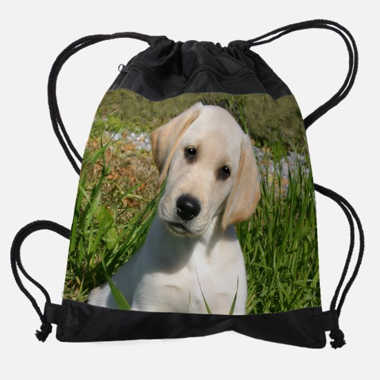 Lab8.png Drawstring Bag