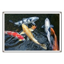 Carp swimming in pond, high angle view Banner