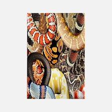 Snake Collage Rectangle Magnet