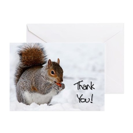 Thank You Squirrel Greeting Cards (Pk of 20)