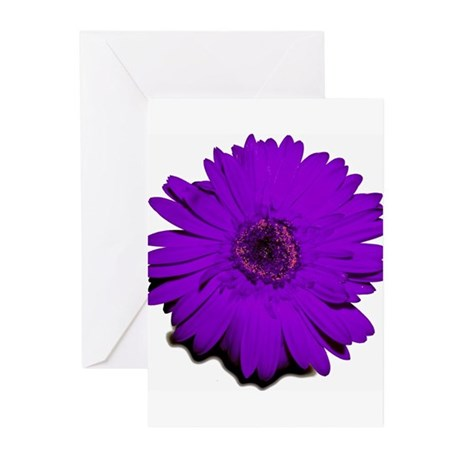 PURPLE! Greeting Cards (Pk of 10)