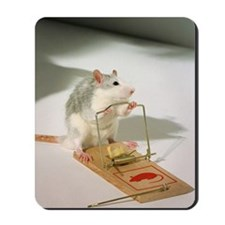 A mouse by a mouse-trap. Mousepad