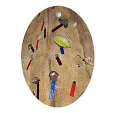 Rock climbing wall Ornament (Oval)