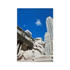 New York City Public Library Rectangle Magnet