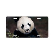 Giant panda Aluminum License Plate