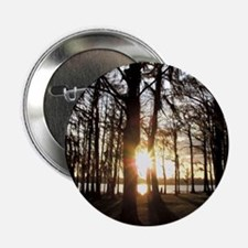 Cypress Sunset Button