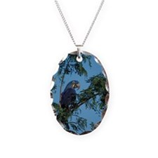 Hyacinth Macaw in Tree Necklace