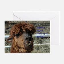 Alpaca haven't heard... G Cards (Pk of 10)