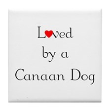 Loved by a Canaan Dog Tile Coaster