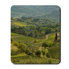 Vinyards and farm fields in the heart of  Mousepad