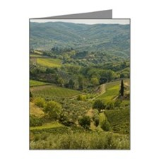 Vinyards and farm fields in  Note Cards (Pk of 20)
