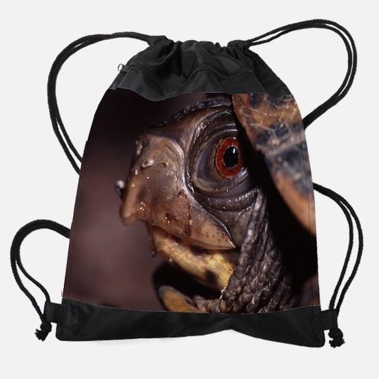 turtle Drawstring Bag