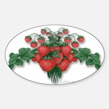 Strawberries! Decal (Rect.) Decal
