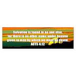 Acts 4:12 Bumper Sticker