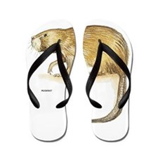 Muskrat Animal Flip Flops