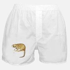 Muskrat Animal Boxer Shorts