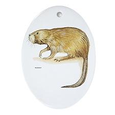 Muskrat Animal Ornament (Oval)