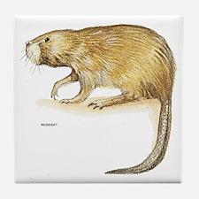 Muskrat Animal Tile Coaster