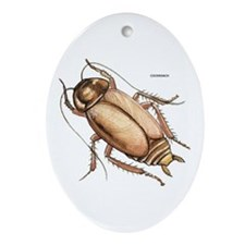 Cockroach Insect Ornament (Oval)