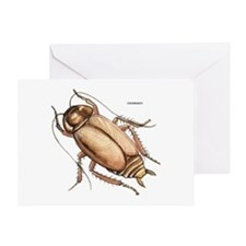 Cockroach Insect Greeting Card