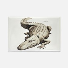 Alligator Gator Animal Rectangle Magnet
