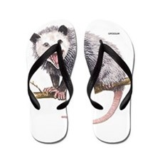 Opossum Possum Animal Flip Flops
