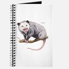 Opossum Possum Animal Journal
