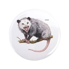 "Opossum Possum Animal 3.5"" Button"