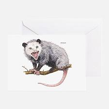 Opossum Possum Animal Greeting Card