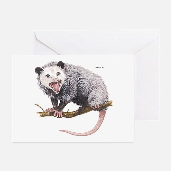 Opossum Possum Animal Greeting Cards (Pk of 10)