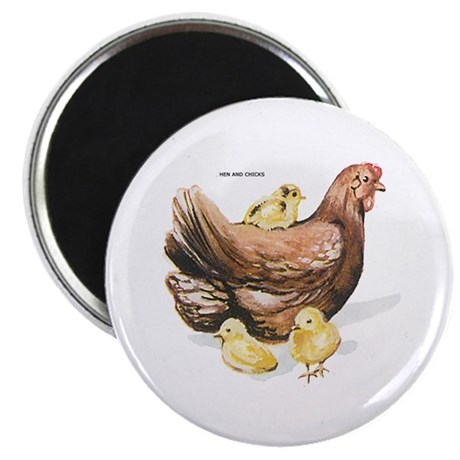 """Hen and Chicks Chicken 2.25"""" Magnet (100 pack)"""