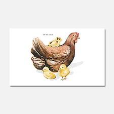 Hen and Chicks Chicken Car Magnet 20 x 12